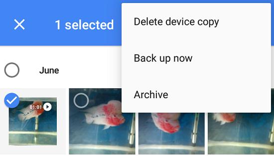 Archive photos in Google Photos